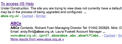 New ABCe homepage in Google