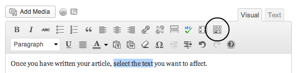 The WordPress formatting button for 'kitchen sink'