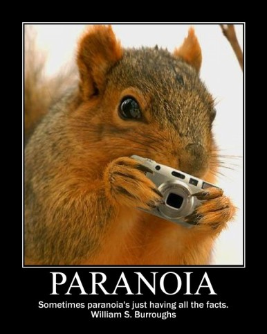 paranoia - squirrel holding camera